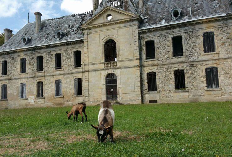Vide grenier dans le Parc de l'Abbaye au profit de l'Association des Amis de Beyzac
